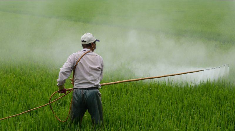 pesticide, roundup, monsanto, glyphosate, Elena Blum