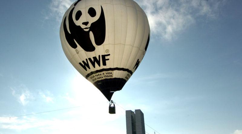 ONG, lobby, environnement, lobbies environnementaux, WWF